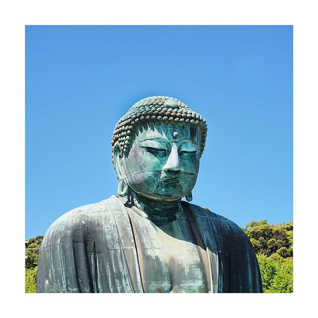 Standing at 11.3 metres tall, the Kamakura Daibutsu makes for an imposing figure. We had decided to visit the charming seaside town of Kamakura for a day out at the beach, but ended up being most impressed by this giant bronze figure. . . . . . #megalopolist #suitcasetravels #freshairclub #igersjapan #postcardplaces #discoverjapan #passionpassport #japantrip #folktravel #roamtheplanet #modernoutdoors #thediscoverer #simplyadventure #neverstopexploring #unlimitedjapan #kamakura #thegreatbuddha #kamakuradaibutsu #traveldeeper #tasteintravel #postcardsfromtheworld #far_eastphotography #travelgram #japan_art_photography #photography_lovers #photographytravel #worldtravelbook #discoverglobe #ig_eternity #visualambassadors