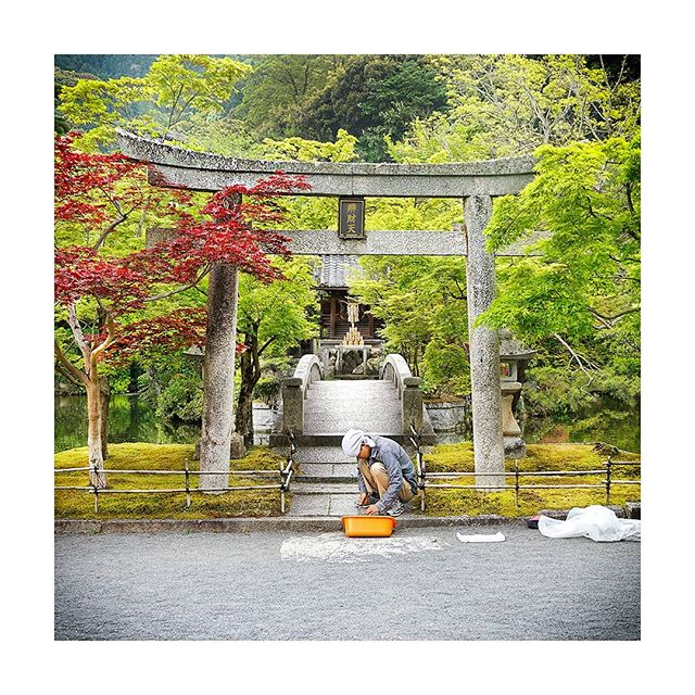 One thing that constantly amazed us during our time in Japan was just how immaculately presented the entire country appears. Nowhere is this more apparent than when visiting Japan's seemingly endless array of temples and shrines. . . . . . #megalopolist #suitcasetravels #freshairclub #igersjapan #postcardplaces #discoverjapan #passionpassport #japantrip #japanfocus #peoplewhoadventure #roamtheplanet #modernoutdoors #thediscoverer #lifewelltravelled #simplyadventure #neverstopexploring #unlimitedjapan #instapassport #traveldeeper #tasteintravel #postcardsfromtheworld #fantastic_earth #far_eastphotography #japan_art_photography #visitjapan #photography_lovers #photographytravel #photographylife #meettheworld #bbctravel