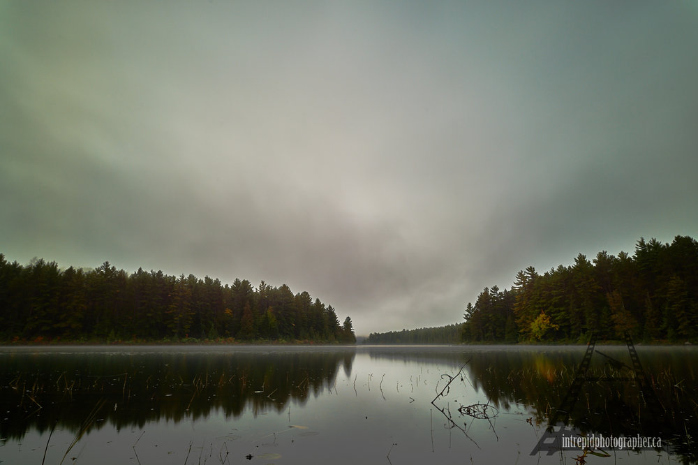 10015-160046-20161004-002056_square-space-ip_ontario-parks-project-algonquin-provincial-park-intrepidphotographer-sean-p-carson.jpg