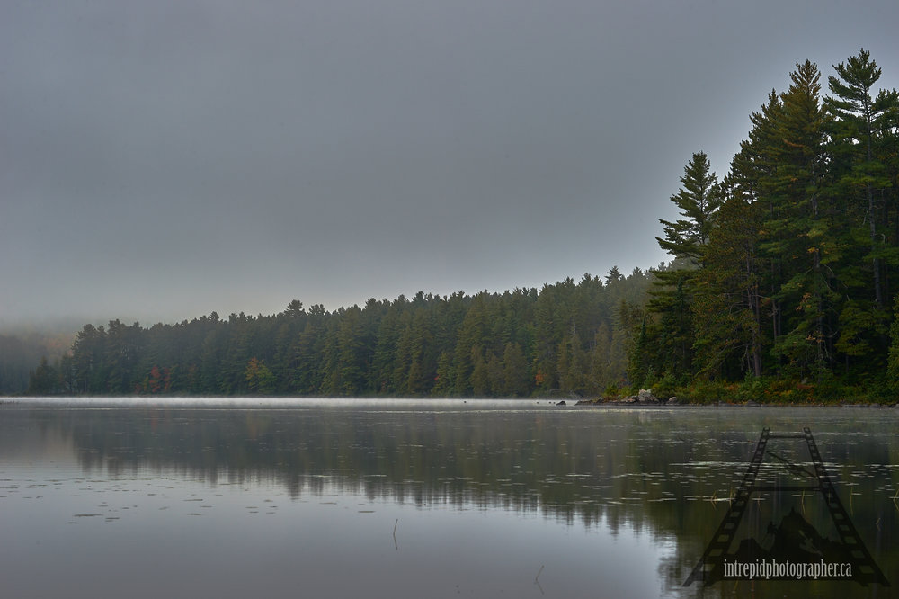 10015-160046-20161004-002060_square-space-ip_ontario-parks-project-algonquin-provincial-park-intrepidphotographer-sean-p-carson.jpg