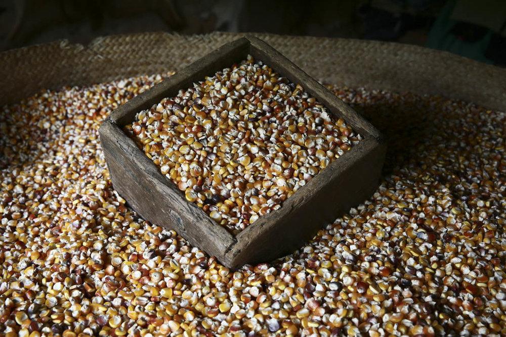 La medida llena de maíz que se usaba durante mucho tiempo para pagar un jornal de trabajo en la milpa.