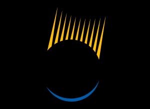 SolarWorld-Logo-300x219.png