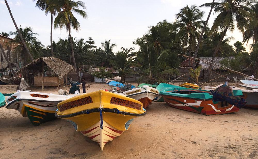 Sri_Lanka_Strand_05.jpg