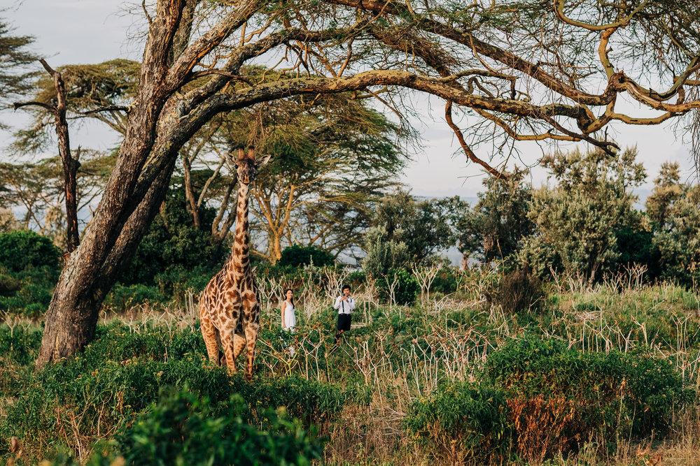 Anna-Hari-Photography-Safari-Elopement-Kenya-Wedding-Photographer-Kenya-78.jpg