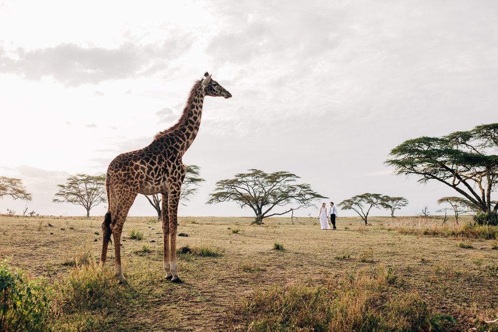 Anna-Hari-Photography-Safari-Elopement-Kenya-Wedding-Photographer-Kenya-81.jpg
