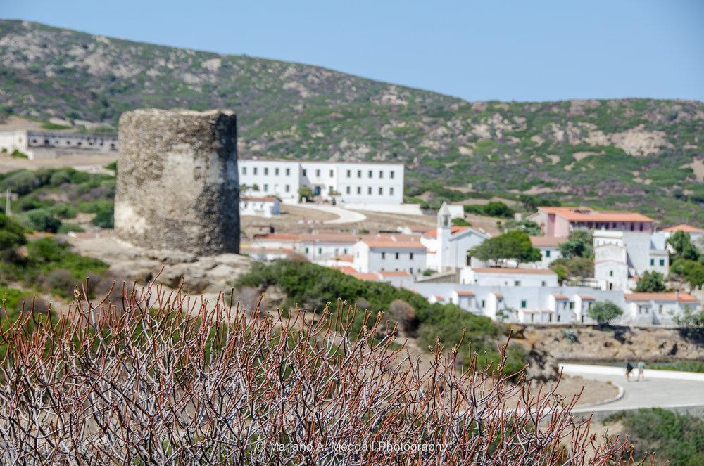 Sardegna2016__090816_663.jpg
