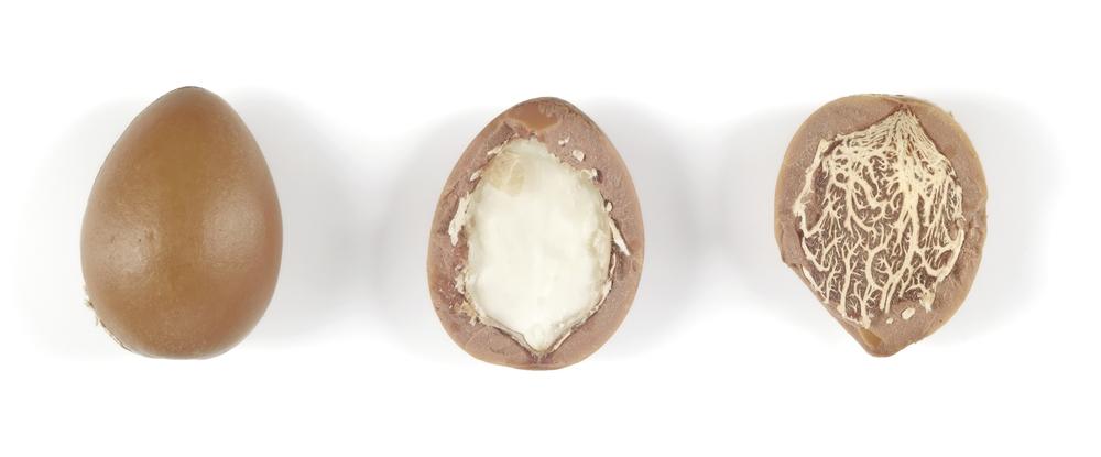 Organic Argan Nut