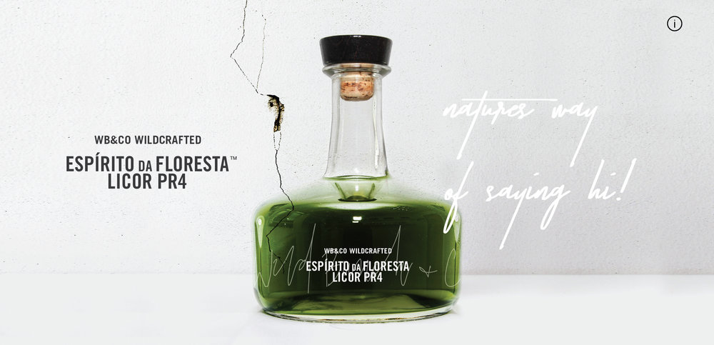WB&CO Espírito da Floresta   Our Signature edition Spirit of the Forest embodies our mantra Adapt to Nature in its purest form. Wildcrafted and hand-made by Wild Bunch & Co. from forest-to-bottle without additives or preservatives to capture the pure aroma, colour and taste of the forest: unpredictable, raw, complex, and just the right side of wild.