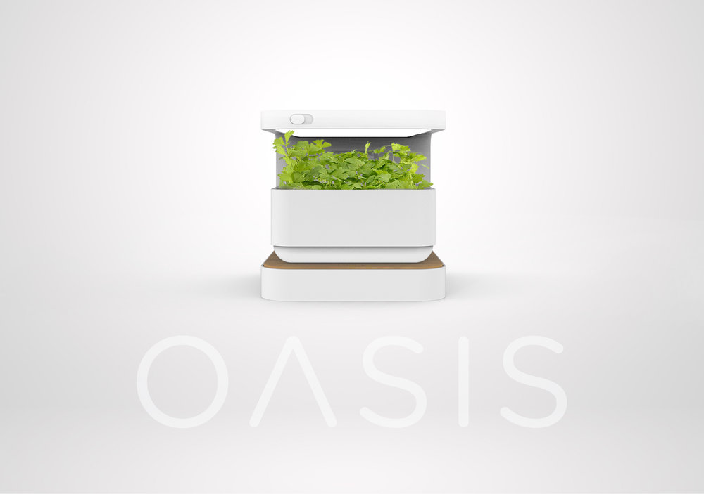 concept02_oasis.jpg