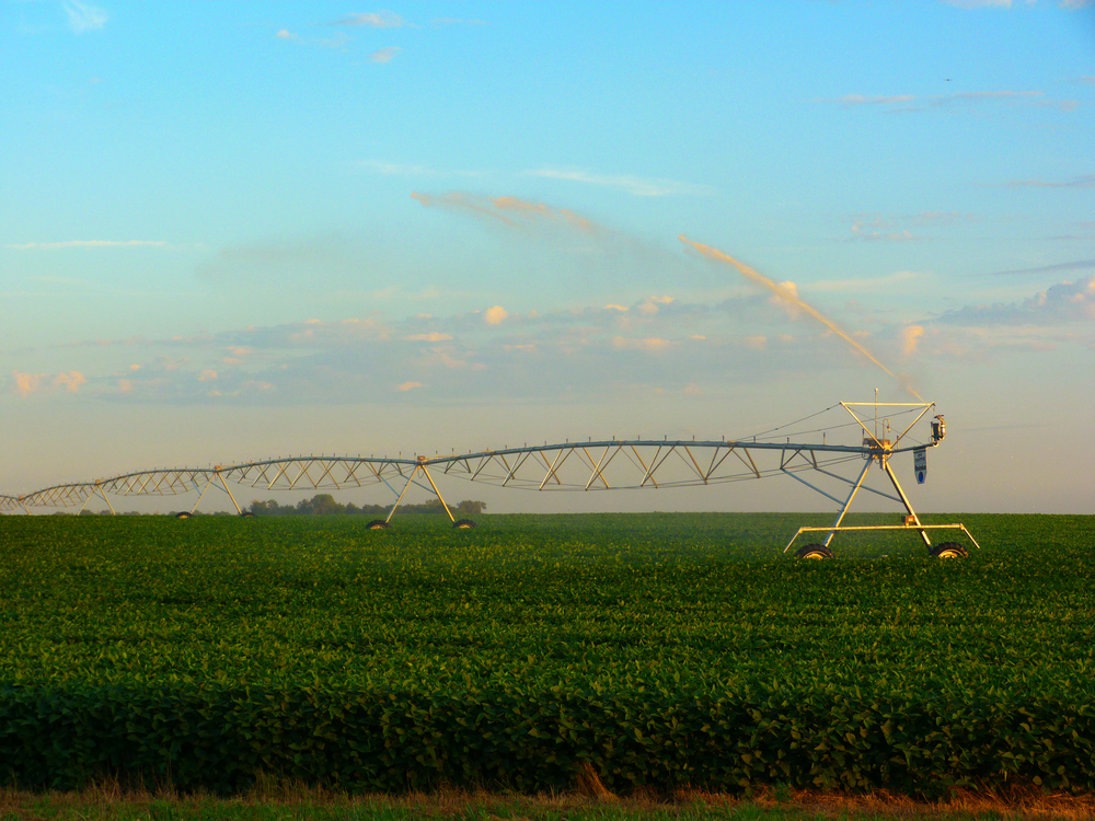 Reinke-Center-Pivot-Soybeans