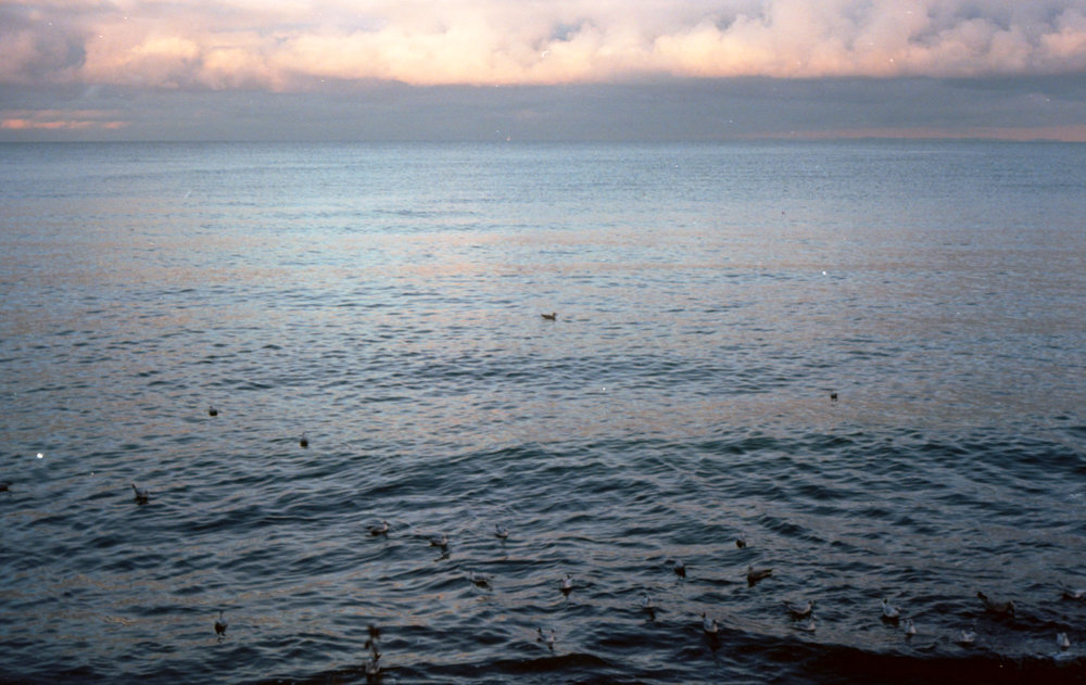 Winter seascape #3 on 35mm