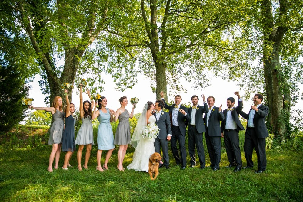 Greg & Jess Photography - Nashville Wedding & Engagement Photographer - Dogs