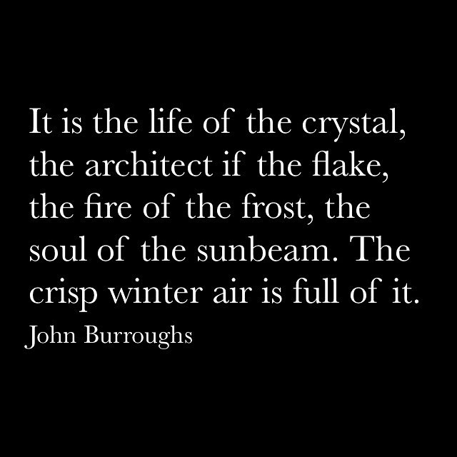Winter has arrived. #winter #seasons #cold #winterseason #bright #snowflake #chill