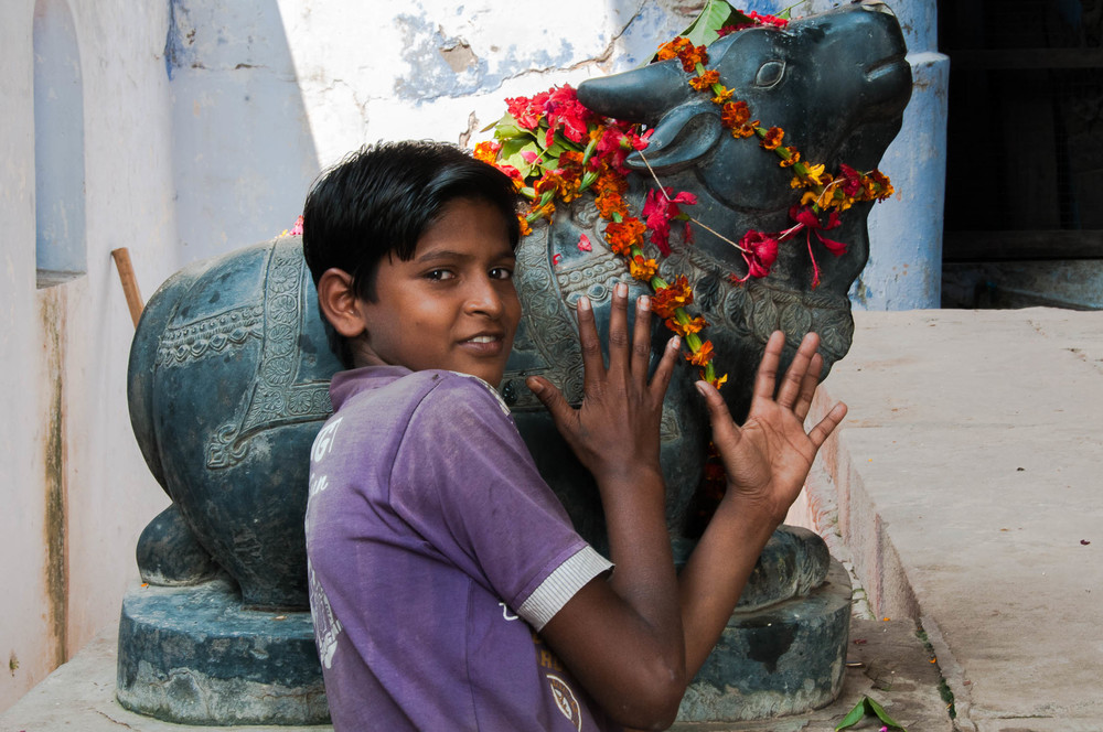 Boy-Varanasi-Hindu-Cow-Love.jpg