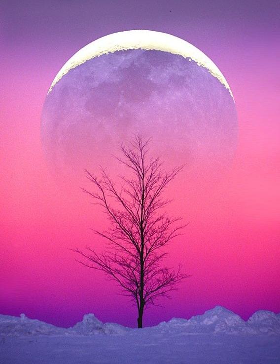 Winter Solstice : Cold Moon promo pic.jpg