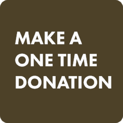 One-Time Donate Button.png