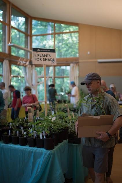 Plant Sale Boxman 2017.jpg