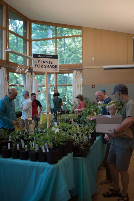 Plant Sale Shoppers II.jpg
