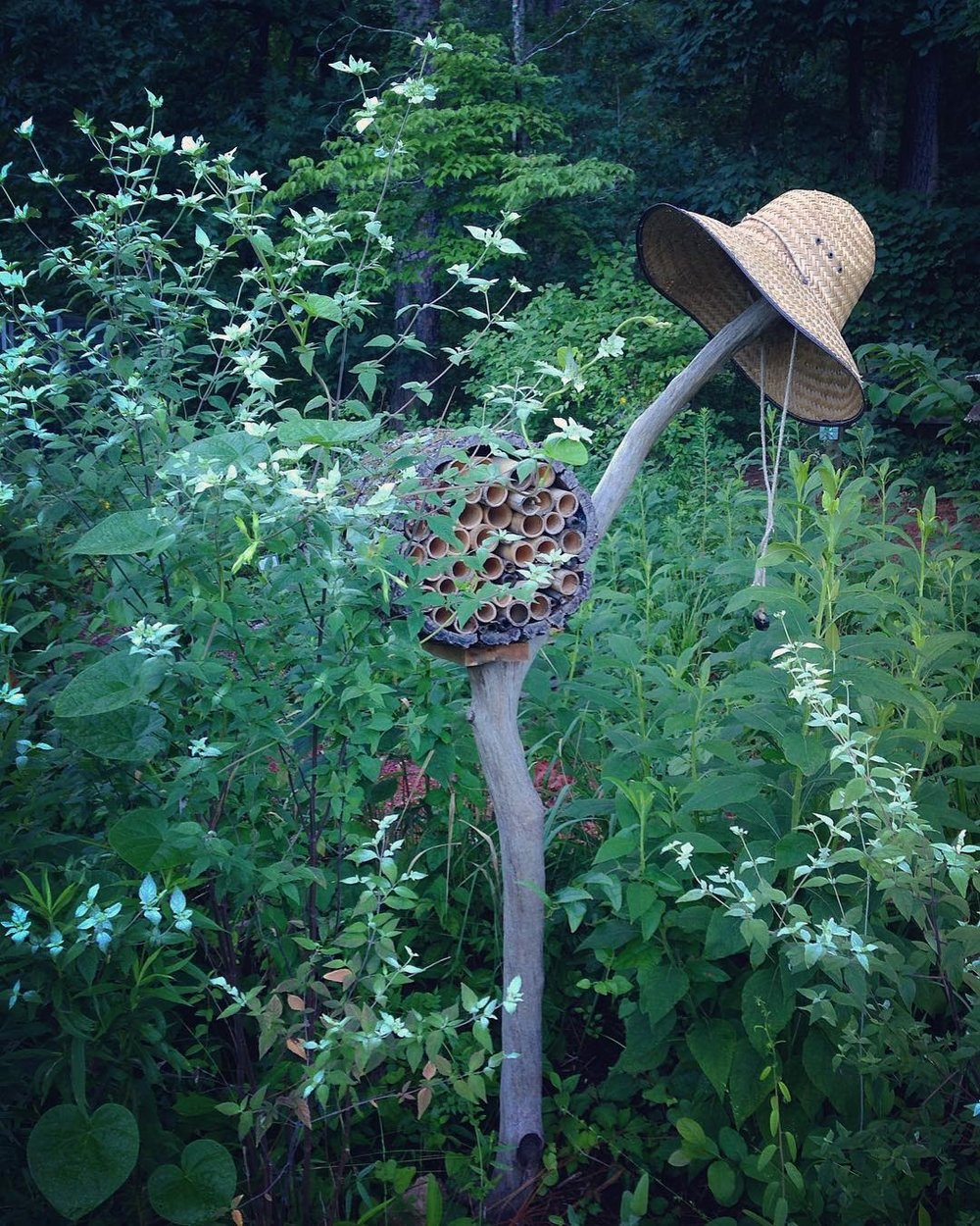 Bee Home in Habitat Garden.jpg