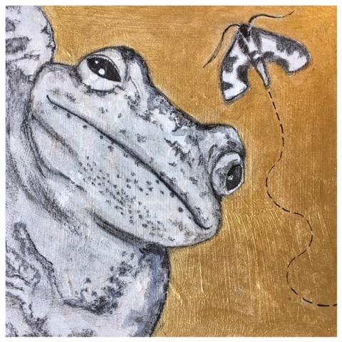 TNR - Tree Frog.jpeg