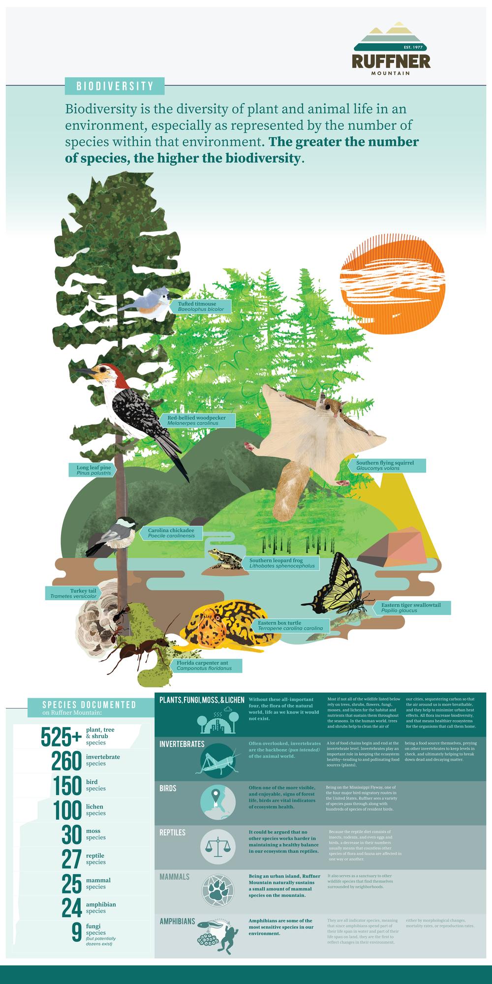 Ruffner_BiodiversityInfographic-Final_18x36.png