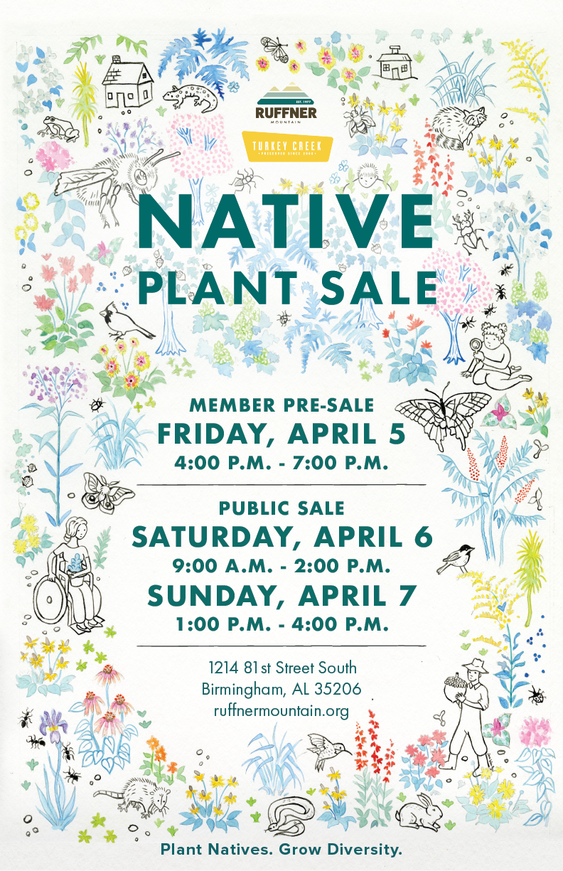 2019 Native Plant Sale Poster (Final).png