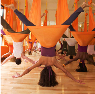 aerial-yoga-teacher-training-workshop