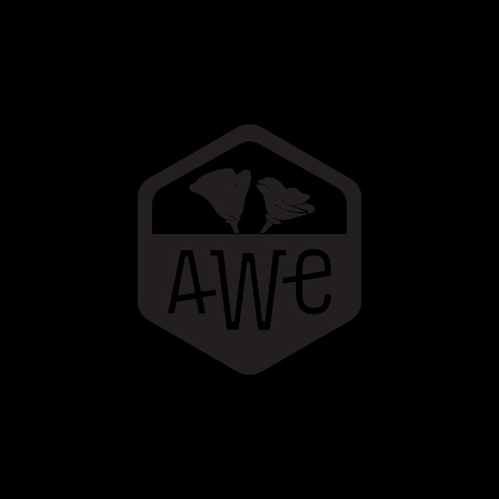 AWE_02.png