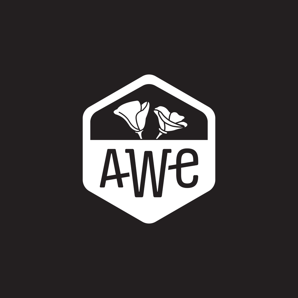 AWE_03.png