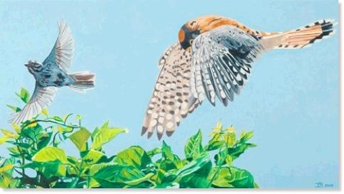 "Kestrel and Sparrow      10"" x 18""         Acrylic   2005"