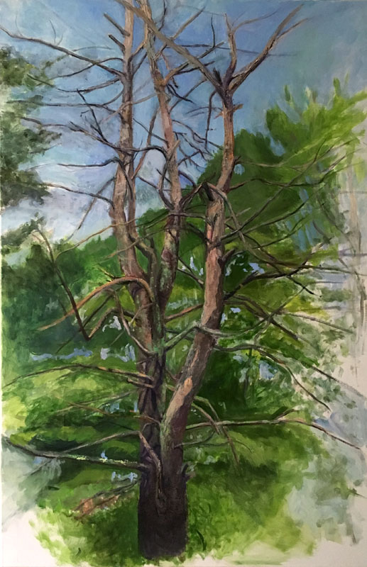 Dead Pine, oil on linen, 36 x 24 inches, 2016