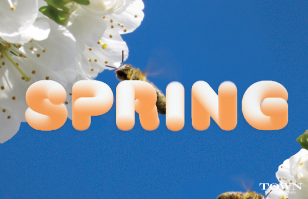 SPRING_HORIZONTAL__HelloSpring_Tulips_3.17.16.png