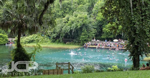 Rainbow Springs Florida Landscapes Jason Collin Photography