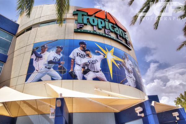 Tropicana Field St Petersburg Florida Landmark Series