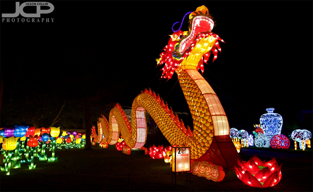 This dragon greets all comers to the New Mexico Chinese Lantern Festival - Nikon D750 with Tamron 15-30mm @ f/4 1/60th ISO 800