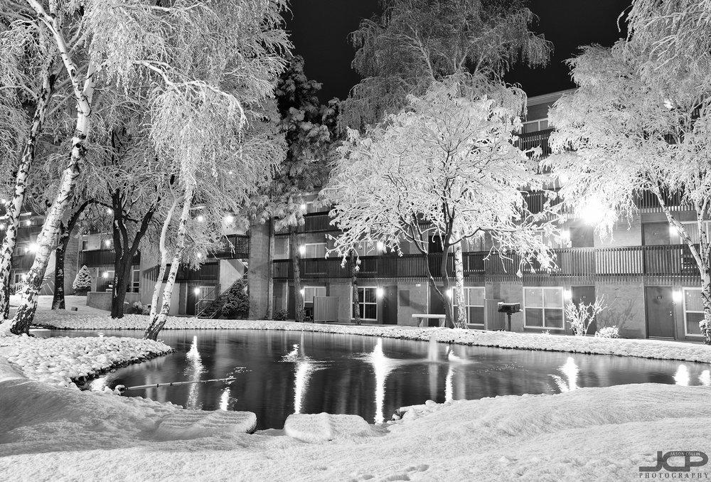 snow-2-22-2019-abq-121415.jpg