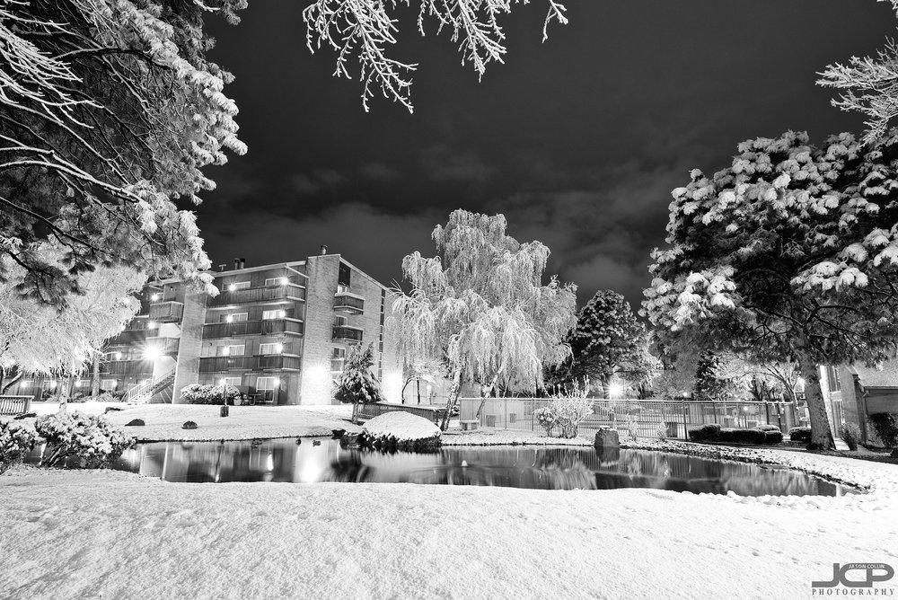 snow-2-22-2019-abq-121434.jpg