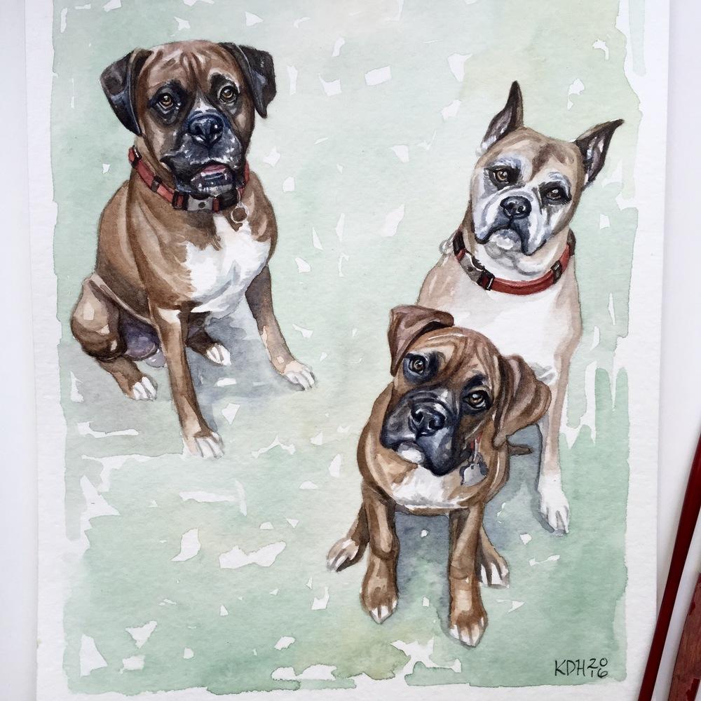 Bama, Blakeley, & Cooper [8x10]