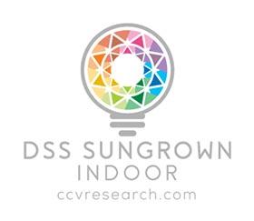 DSS3.jpg