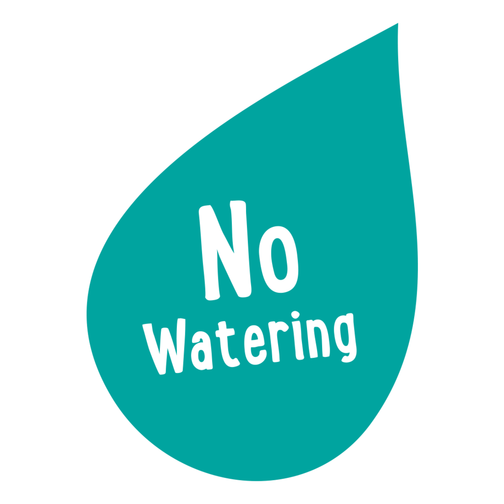 no-watering.png