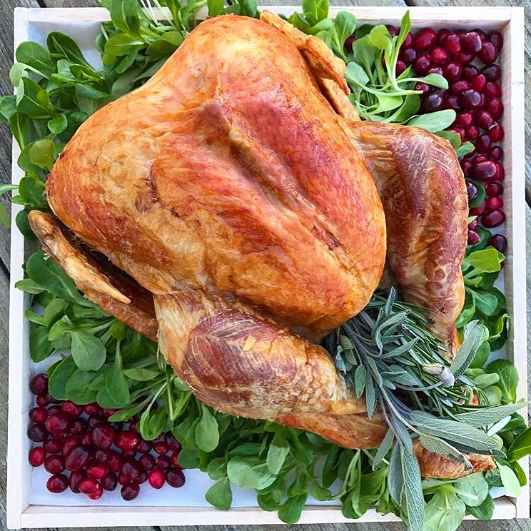 Thanksgiving Recipes -
