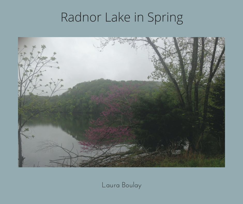 Radnor Lake in Spring.png