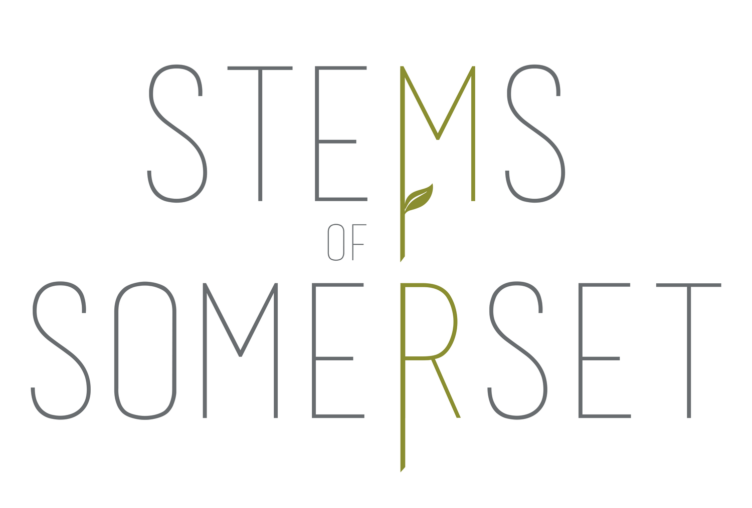 Stems of Somerset