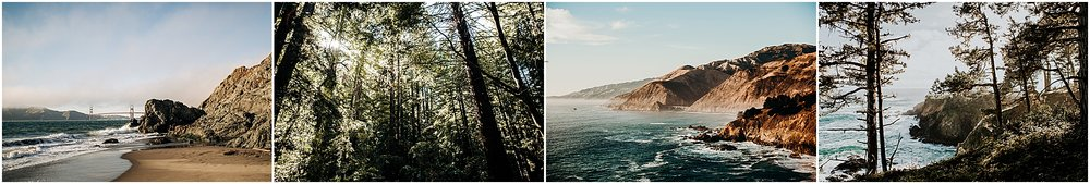 elope in san francisco, elope in the redwoods, elope in big sur, elope in fort bragg, elope in mendocino
