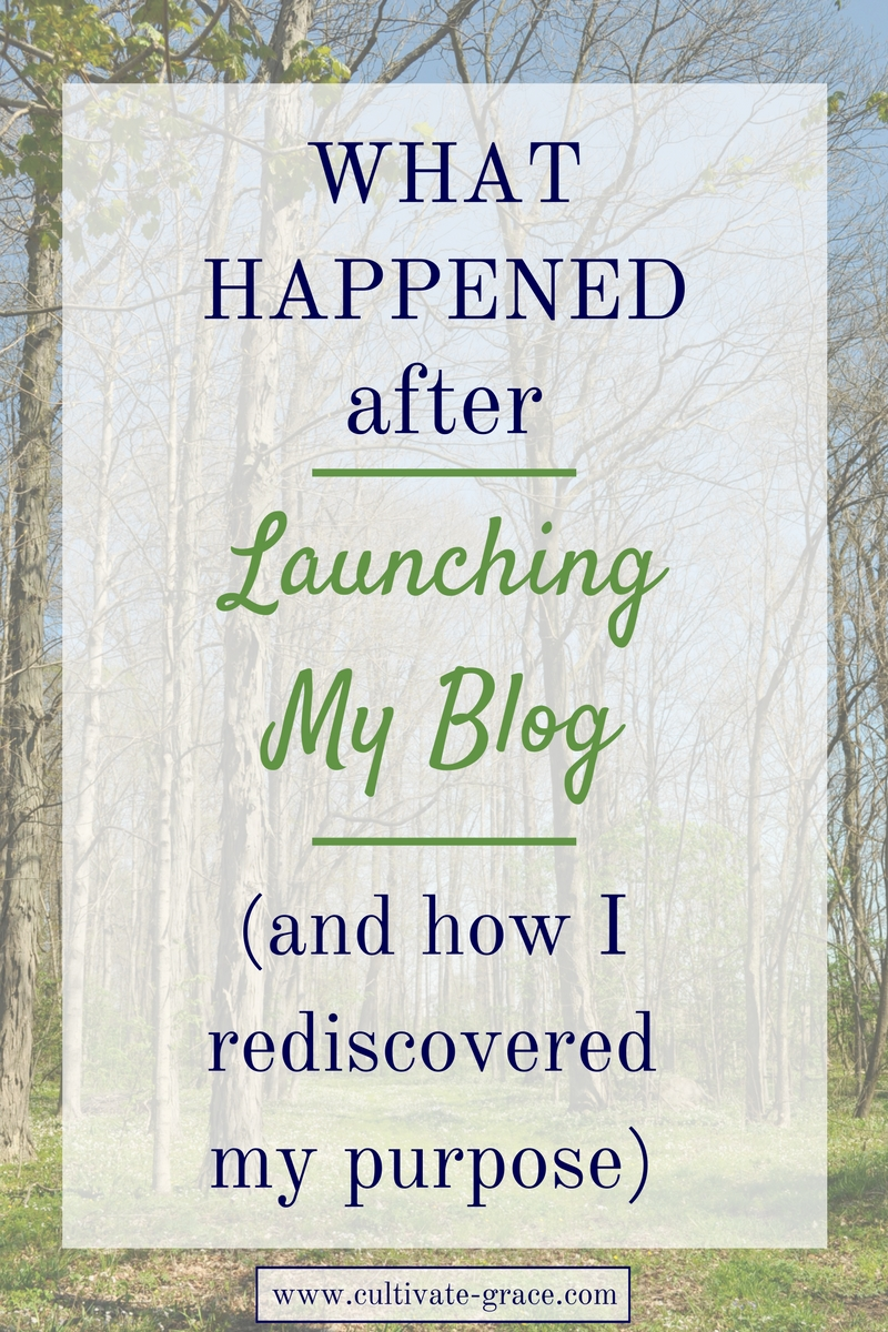 What Happened After Launching My Blog and how I rediscovered my purpose