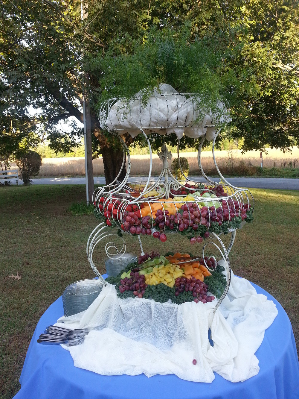 Corporate Event Fruit Spread2.jpg