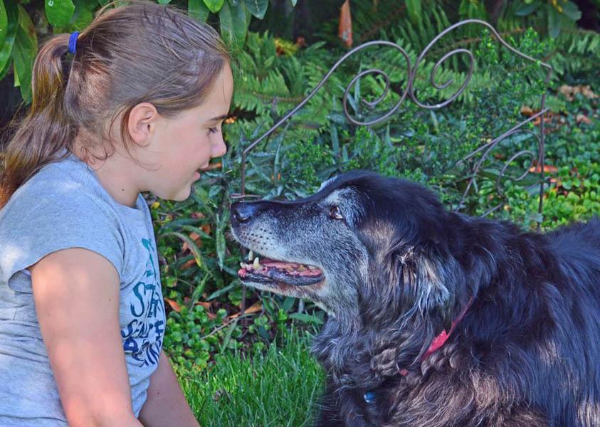 April's Riley & Summer.jpg