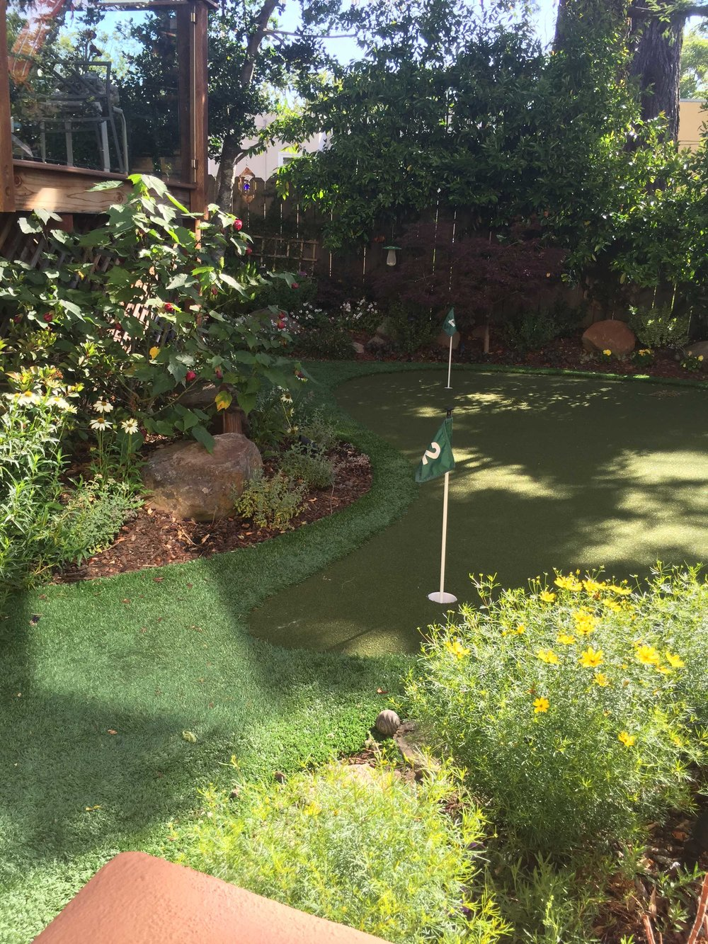 Drought Tolerant Back Garden Putting Green