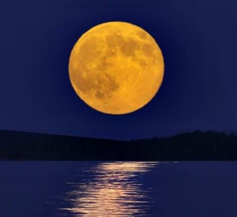 Harvest Moon Paddle