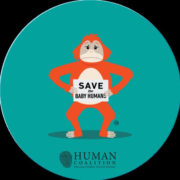 OrangutanBumperFinal-HC_1_grande.png